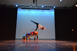 Institute of Dance Artistry